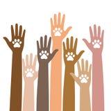 Zampa animale del cane in mano della gente, aiuto umano Passi le zampe della tenuta - protezione degli animali nei precedenti del Immagini Stock Libere da Diritti