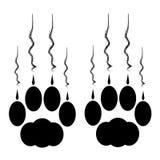 Zampe del gatto con gli artigli e graffi su fondo bianco Fotografia Stock Libera da Diritti