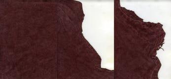 Zamszowy rzemienna tekstura z poszarpanymi krawędziami zdjęcie royalty free