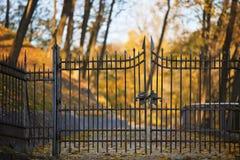 Zamykać żelazo gwoździć bramy Zdjęcie Royalty Free