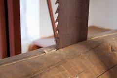 zamyka rozcięcia zobaczyć w górę drewna Fotografia Stock