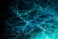Zamyka up Abstrakcjonistyczna pająk sieć Obrazy Royalty Free