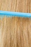 Zamyka up błękit grępla w blondynka włosy Obraz Royalty Free