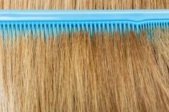 Zamyka up błękit grępla w blondynka włosy Obrazy Royalty Free