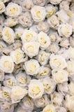 Zamyka up białe róże Zdjęcia Royalty Free
