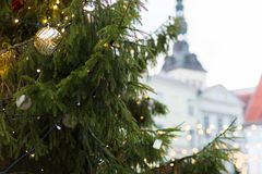 Zamyka up choinka przy starym miasteczkiem w Tallinn Zdjęcia Royalty Free