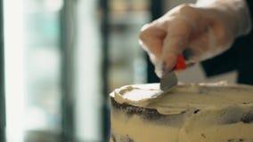 Zamyka up cukierniczka stosuje białą śmietankę czekoladowy tort z szpachelką zbiory wideo