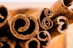 Zamyka up cynamon na drewnianym pucharze odizolowywającym na bielu Fotografia Royalty Free