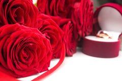 Zamyka up czerwone róże Zdjęcia Royalty Free