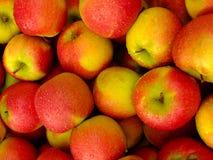Zamyka up czerwoni jabłka zdjęcia royalty free