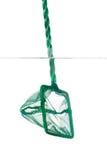 Zamyka up desantowa sieć w fishbowl Obraz Stock