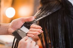Zamyka up fryzjer kobieta stosuje włosianą opiekę z gręplą jej klient obraz royalty free