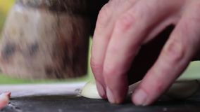 Zamyka up goździkowy czosnek miażdży zbiory