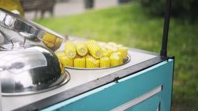 Zamyka up gorąca piec na grillu kukurudza w parku zdjęcie wideo
