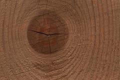 Zamyka up konar na brown drewnianej desce obraz royalty free