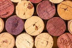 Zamyka up korkowy wino Zdjęcie Royalty Free