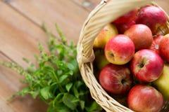 Zamyka up kosz z jabłkami i ziele na stole Obrazy Stock