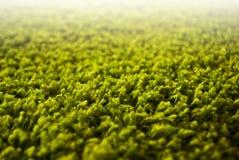 Zamyka up lub szczegół zielony dywan Fotografia Royalty Free