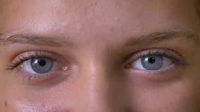 Zamyka up młodzi śliczni dziewczyn niebieskie oczy