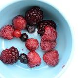 Zamyka up mieszana jagody owoc Obraz Royalty Free