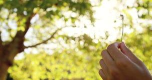 Zamyka up modniś kobieta oddycha out na pollen zdjęcie wideo