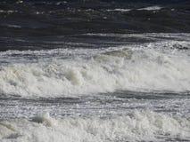 Zamyka up na nabrzeżnym vawe Zdjęcie Royalty Free