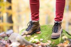 Zamyka up nogi unrecognizable kobieta w jesieni naturze Obrazy Stock