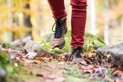 Zamyka up nogi unrecognizable kobieta w jesieni naturze Fotografia Stock