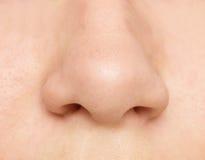 Zamyka up nos Zdjęcie Stock