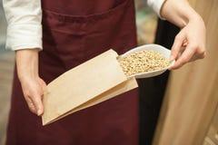 Zamyka up organicznie ziarno Zdrowy karmowy składnik Fotografia Royalty Free