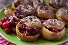 Zamyka up piec jabłka z cranberries Obraz Royalty Free