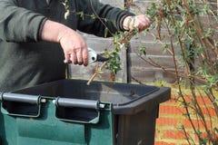 Zamyka up przetwarzać ogródu odpady. Zdjęcia Stock