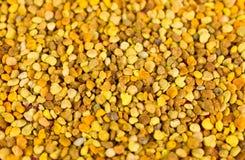 Zamyka up pszczoły pollen Obrazy Royalty Free
