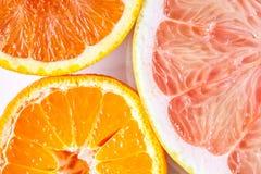Zamyka up różnorodne cytrus owoc pomarańcze, mandarynka i grapefruitowy -, zdjęcie stock