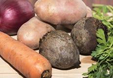 Zamyka up różnorodni surowi warzywa Obrazy Royalty Free