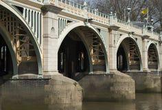 Zamyka up Richmond kędziorki Zdjęcie Royalty Free