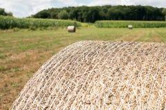 Zamyka up round bela zbierająca w polu siano zdjęcie stock