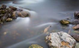 Zamyka up rzeka z kamieniami i roślinami obrazy royalty free
