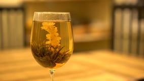 Zamyka up specjalna kwiat herbata zbiory wideo