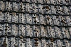 Zamyka up starzeć się dekarstwo płytki na starym domu w wiosce Mnóstwo mech na kafelkowym dachu hovel błękitny wsi pusty drogowy  obraz stock