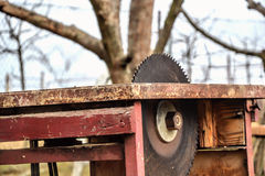 Zamyka up stołowy kółkowy saw ostrze w warsztacie Woodwork, prac zagrożenia Niebezpieczny serrated tablesaw Fotografia Stock