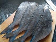 Zamyka up surowej ryba ogony zdjęcia stock
