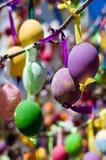 Zamyka up Wielkanocni jajka na gałąź Fotografia Royalty Free