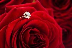 Zamyka up złoty pierścionek Fotografia Royalty Free