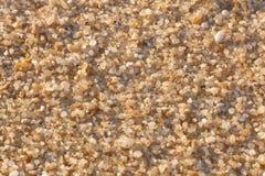 Zamyka w górę Makro- adra piasek na plaży zdjęcia royalty free