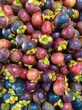 Zamyka w górę wiele świezi organicznie mangostten tło obraz stock