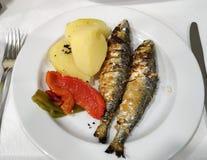 Zamyka w górę świeżo piec na grillu Portugalskich sardynek zdjęcia royalty free