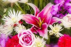 Zamyka w górę abstrakcjonistycznego kwiatu tła Zdjęcia Royalty Free