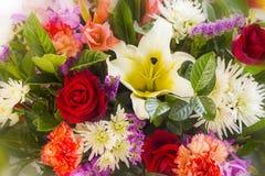 Zamyka w górę abstrakcjonistycznego kwiatu tła Obraz Stock