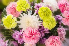 Zamyka w górę abstrakcjonistycznego kwiatu tła Fotografia Royalty Free